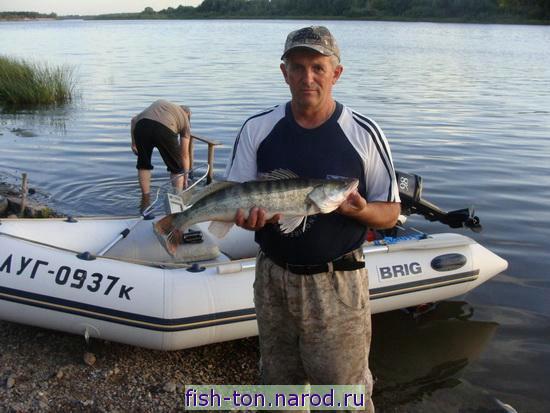 рыбалка в костроме сегодня где клюет видео