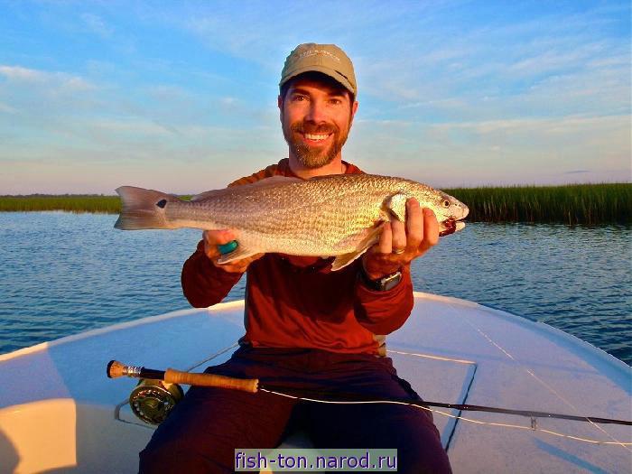 платная рыбалка щука в воронежской области